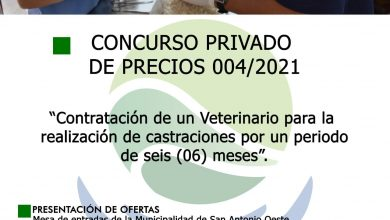 Photo of CONCURSO PRIVADO PARA CONTRATACIÓN DE VETERINARIO PARA ZOONOSIS MUNICIPAL
